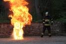 Brandschutz Syrdallschloss 2012